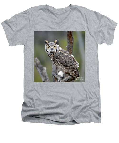 Great Horned Owl Men's V-Neck T-Shirt