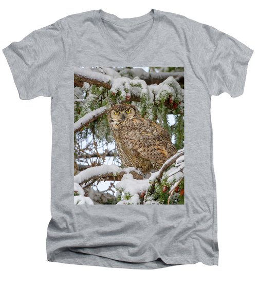 Great Horned Owl In Snow Men's V-Neck T-Shirt by Jack Bell