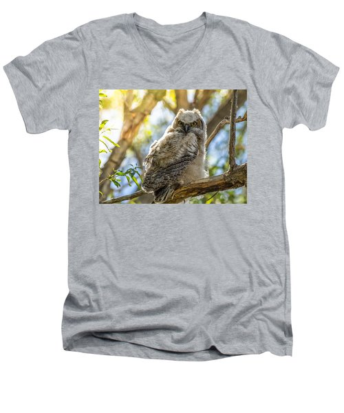 Great-horned Owlet In Spring Men's V-Neck T-Shirt by Yeates Photography