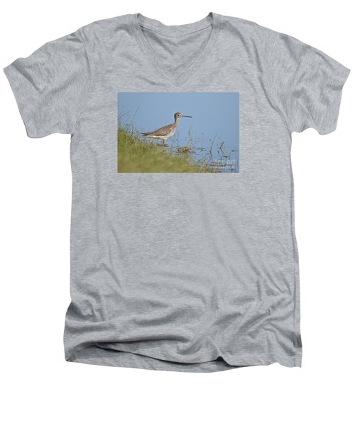 Greater Yellowlegs Men's V-Neck T-Shirt by Kathy Gibbons
