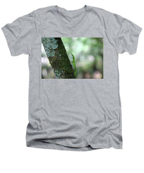 Green Anole Climbing Men's V-Neck T-Shirt