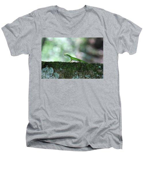 Green Anole Posing Men's V-Neck T-Shirt