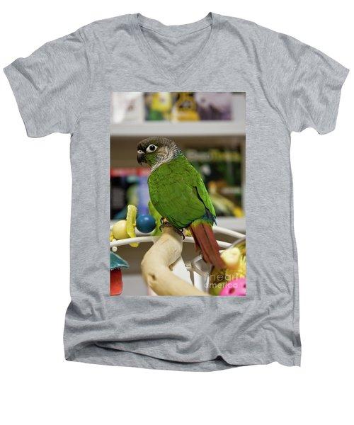 Green Cheek Conure Men's V-Neck T-Shirt