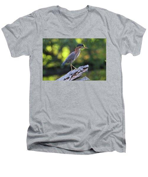 Green Heron Stump Men's V-Neck T-Shirt