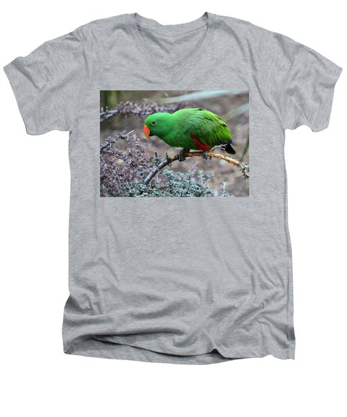 Green Male Eclectus Parrot Men's V-Neck T-Shirt