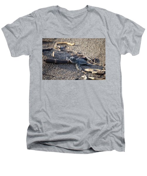 Men's V-Neck T-Shirt featuring the photograph Green Sea Turtle Hatchling by Breck Bartholomew