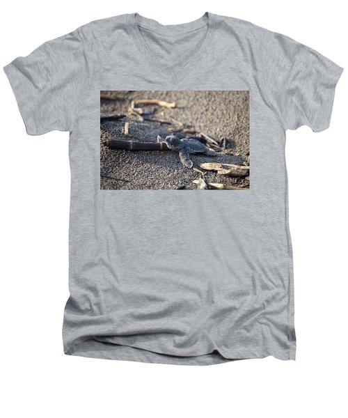 Green Sea Turtle Hatchling Men's V-Neck T-Shirt