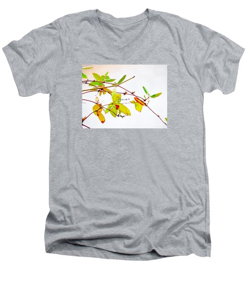 Green Twigs And Leaves Men's V-Neck T-Shirt