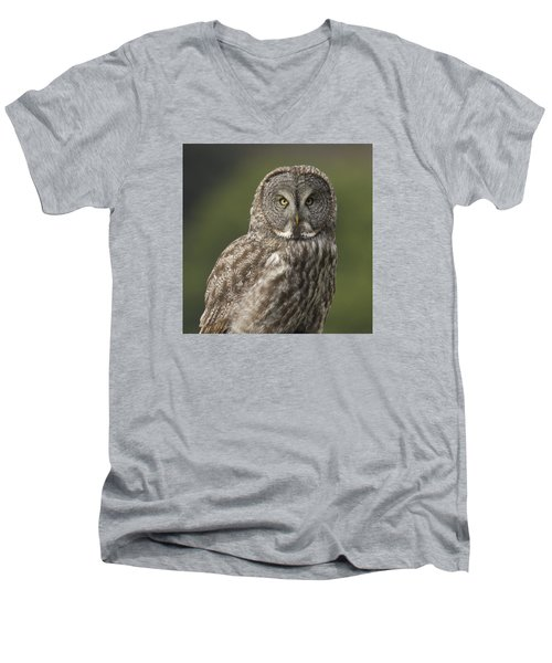 Men's V-Neck T-Shirt featuring the photograph Great Gray Owl Portrait by Doug Herr