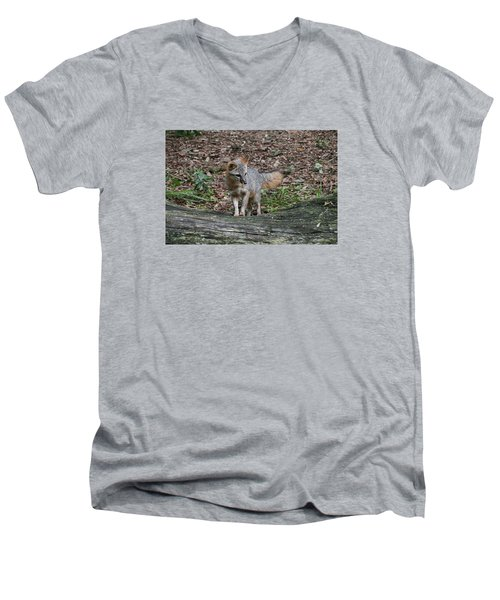 Grey Fox Men's V-Neck T-Shirt