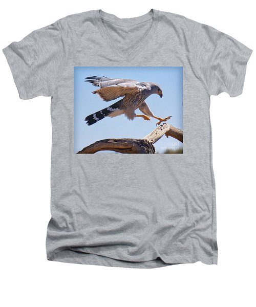 Men's V-Neck T-Shirt featuring the photograph Grey Hawk Alights by Martin Konopacki