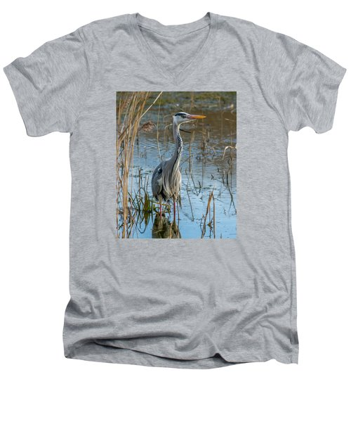 Grey Heron Hunting Men's V-Neck T-Shirt