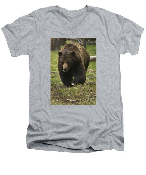 Men's V-Neck T-Shirt featuring the photograph Grizzly Boar-signed-#7914 by J L Woody Wooden