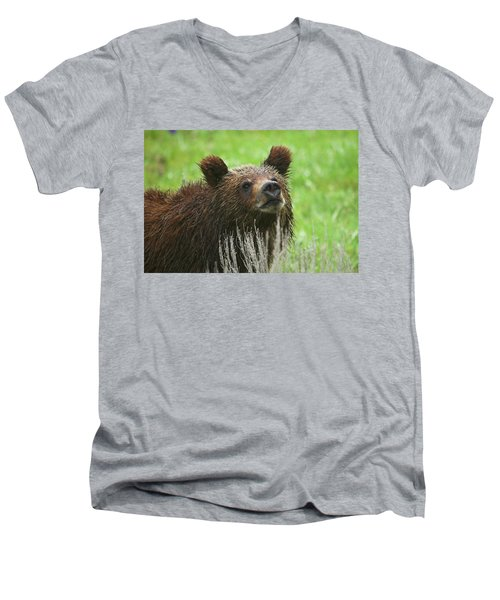 Men's V-Neck T-Shirt featuring the photograph Grizzly Cub by Steve Stuller