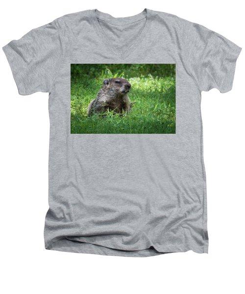 Groundhog Posing  Men's V-Neck T-Shirt