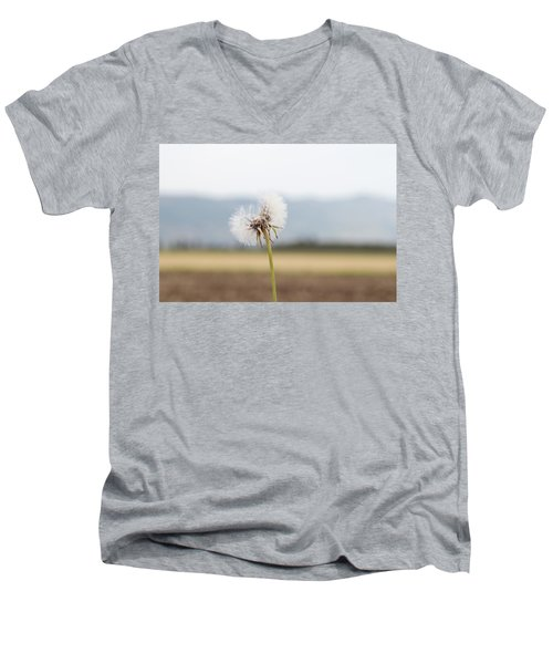 Groundsel In The Wind Men's V-Neck T-Shirt
