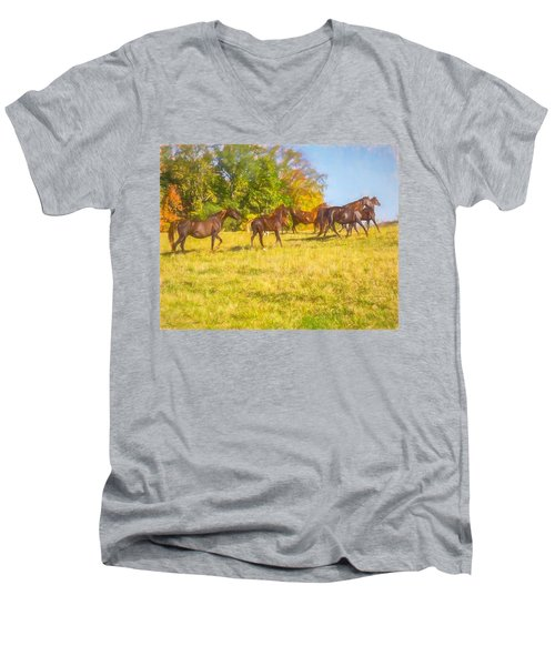 Group Of Morgan Horses Trotting Through Autumn Pasture. Men's V-Neck T-Shirt