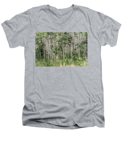 Grove Of Quaking Aspen Aka Quakies Men's V-Neck T-Shirt