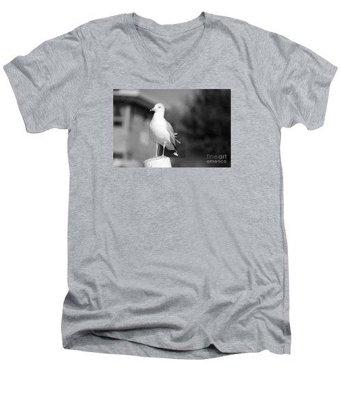 Gull In Black And White Men's V-Neck T-Shirt