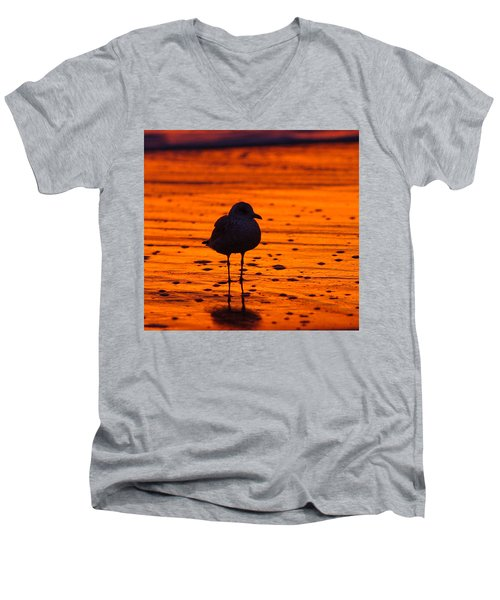 Gull Caught At Sunrise Men's V-Neck T-Shirt