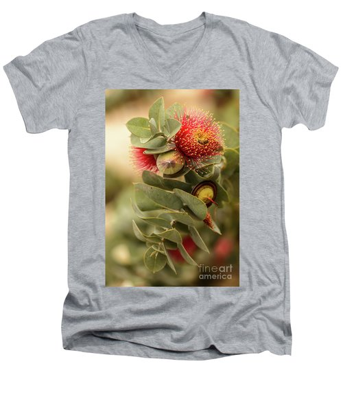 Men's V-Neck T-Shirt featuring the photograph Gum Nuts by Werner Padarin
