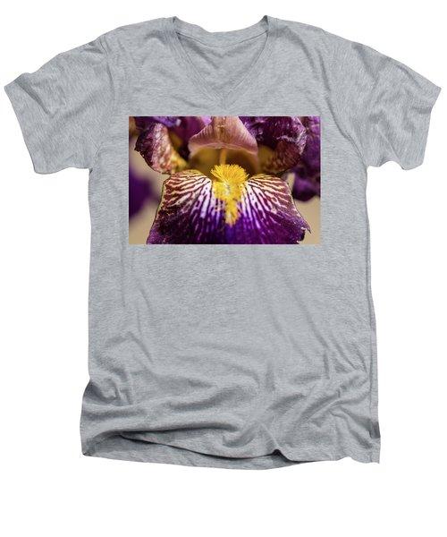 Hair Of The Dog Men's V-Neck T-Shirt