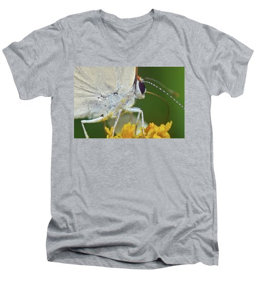 Hairstreak Closeup Men's V-Neck T-Shirt