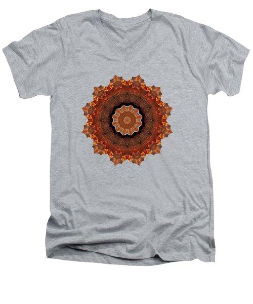 Halloween Kaleidoscope Sliver2-235 Men's V-Neck T-Shirt