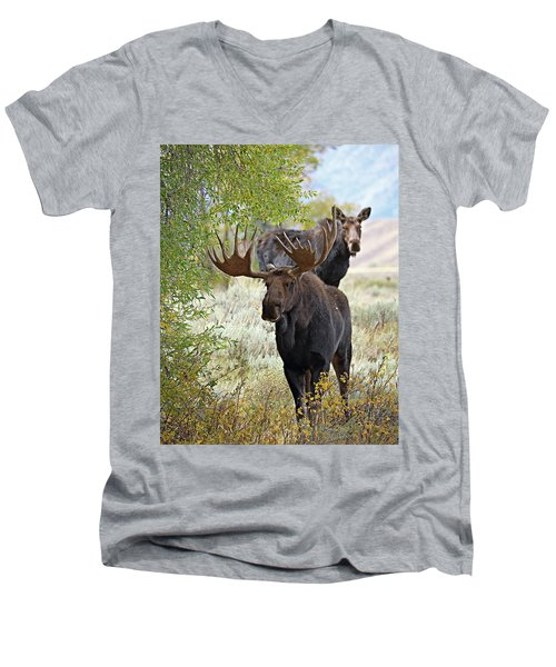 Handsome Bull With Cow Men's V-Neck T-Shirt