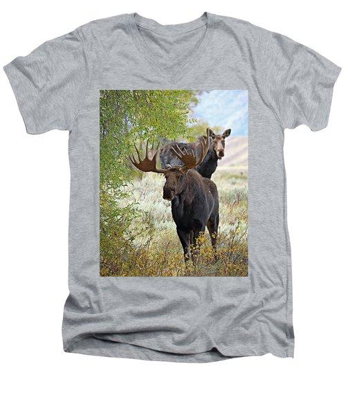 Handsome Bull With Cow Men's V-Neck T-Shirt