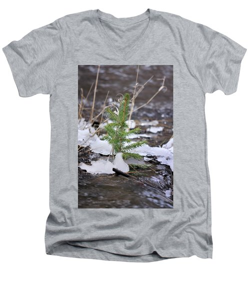 Hanging In There Men's V-Neck T-Shirt