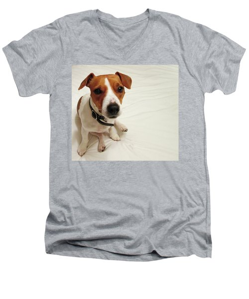 Happiness Is A Cute Puppy Men's V-Neck T-Shirt