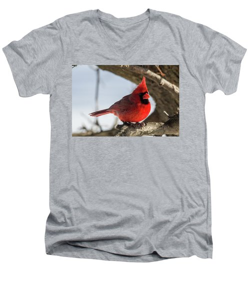 Happy Mister Cardinal Men's V-Neck T-Shirt
