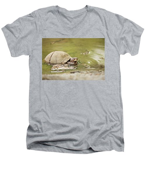 Happy Turtle Men's V-Neck T-Shirt