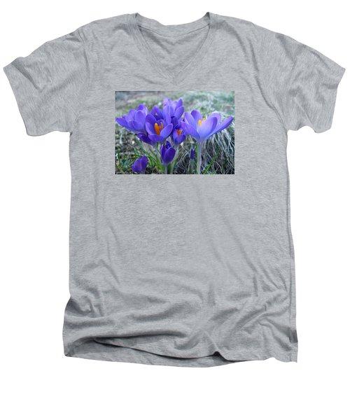 Harbinger Of Spring Men's V-Neck T-Shirt by Barbara McDevitt