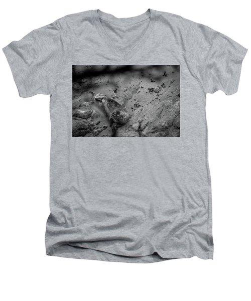 Harbor Seal Pup Monochrome  Men's V-Neck T-Shirt