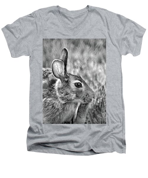 Hare Men's V-Neck T-Shirt