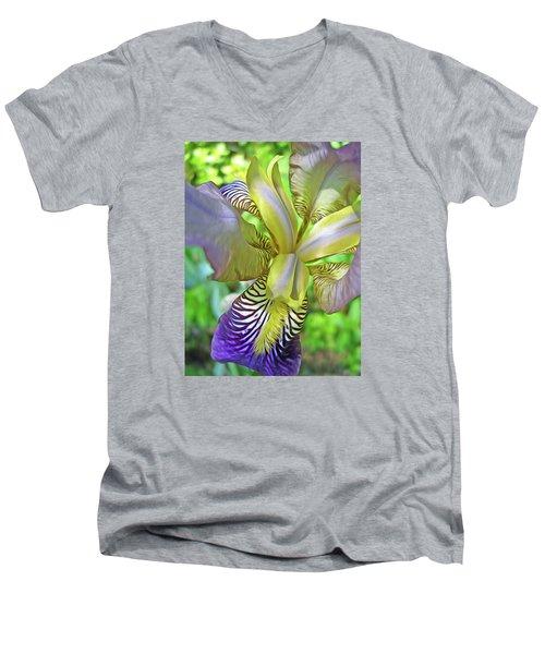 Harmony 4 Men's V-Neck T-Shirt by Lynda Lehmann