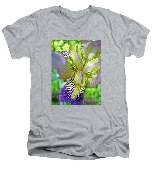 Harmony 4 Men's V-Neck T-Shirt