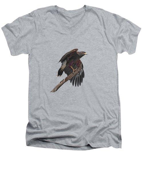 Harris Hawk - Transparent Men's V-Neck T-Shirt by Nikolyn McDonald