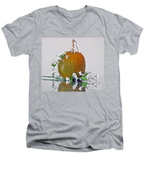 Harvest Men's V-Neck T-Shirt