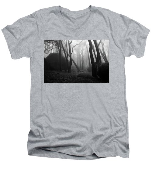 Haunted Woods Men's V-Neck T-Shirt by Jorge Maia