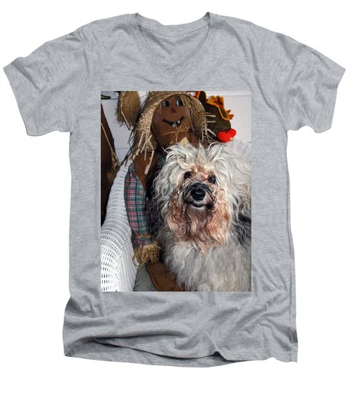 Havanese Cutie Men's V-Neck T-Shirt by Sally Weigand