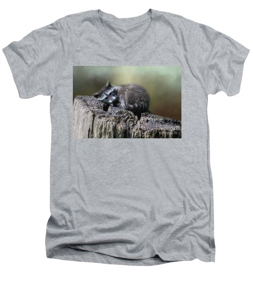 Having A Rest Men's V-Neck T-Shirt