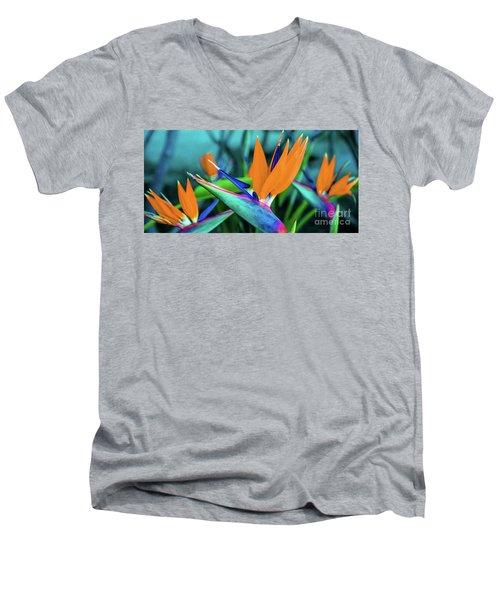 Hawaii Bird Of Paradise Flowers Men's V-Neck T-Shirt