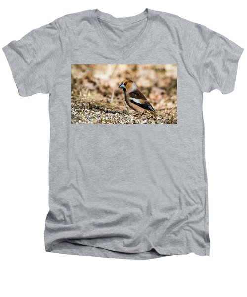 Men's V-Neck T-Shirt featuring the photograph Hawfinch's Gaze by Torbjorn Swenelius
