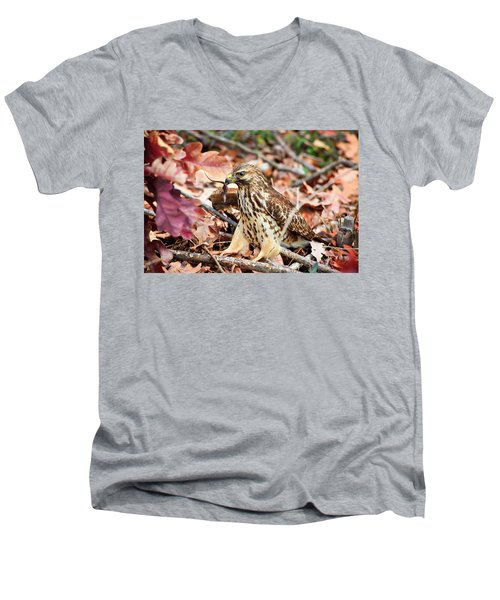 Hawk Catches Prey Men's V-Neck T-Shirt