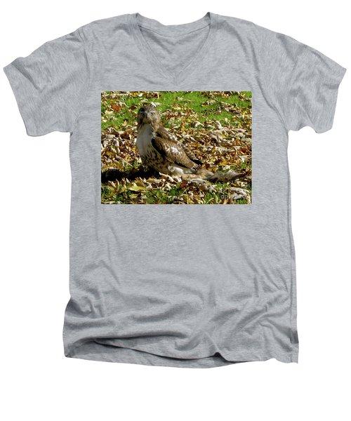 Hawk Falling Leaves Men's V-Neck T-Shirt
