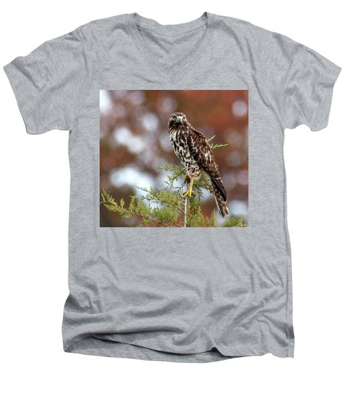 Red Shoulder Hawk Looking At Me Men's V-Neck T-Shirt