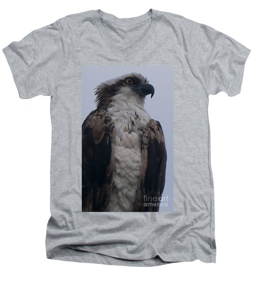 Hawk Looking Into The Distance Men's V-Neck T-Shirt